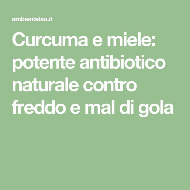 Curcuma e miele: potente antibiotico naturale contro freddo e mal di gola