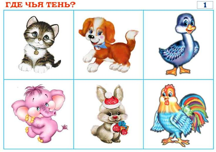 картинки животных обучающие для самых маленьких создать календарь