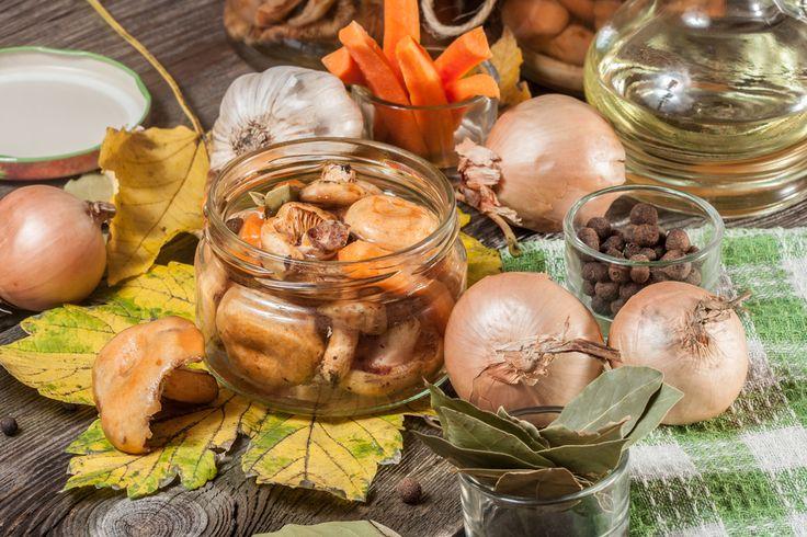 Как приготовить маринованные грибы: ТОП-5 рецептов