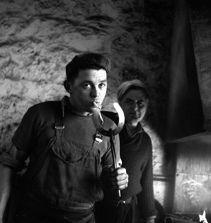 Atelier Robert Doisneau | Galeries virtuelles des photographies de Doisneau - Chevaux