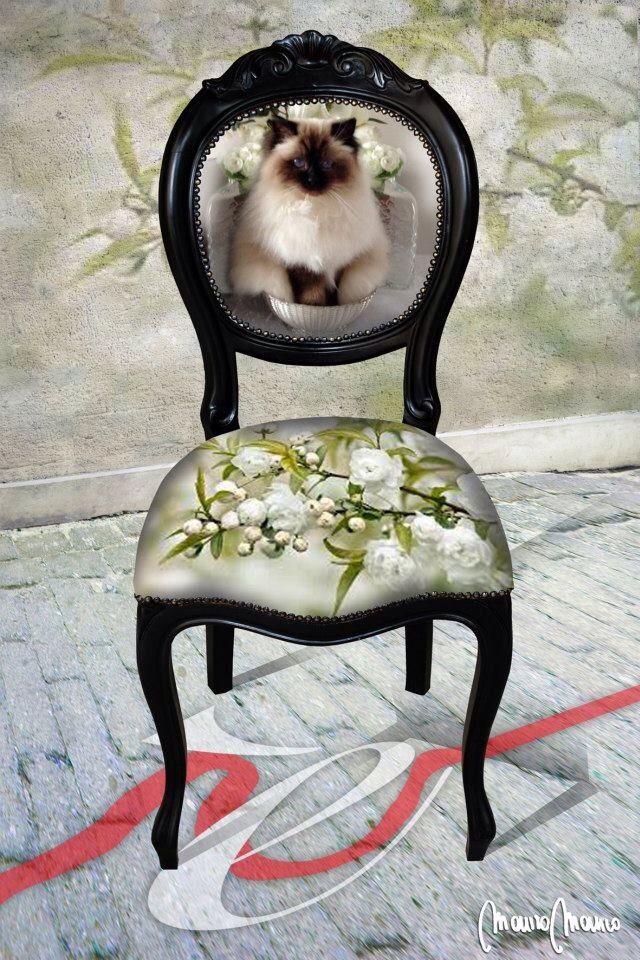 Un regalo speciale per chi ama i gatti , la sedia CASTèSTYLE personalizzata con la fotografia del tuo amico a 4 zampe , contattaci senza impegno per saperne di più castestyle@gmail.com