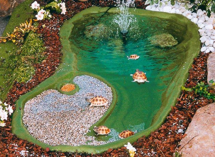 17 migliori idee su laghetto per tartarughe su pinterest for Vasche pesci da giardino