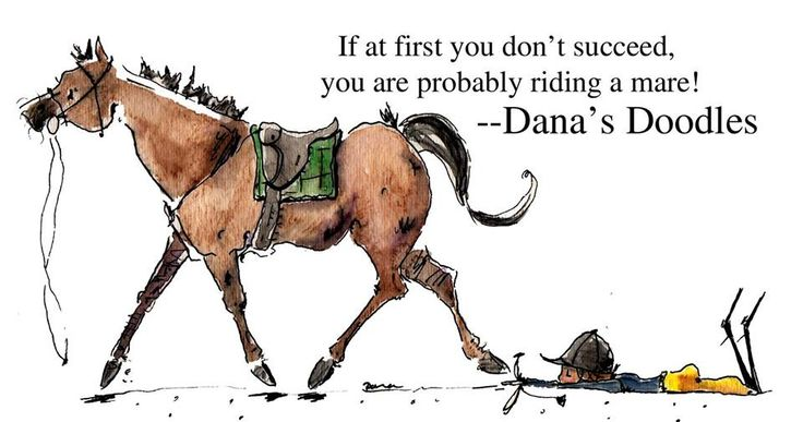 """""""If at first you don't succeed, you are probably riding a mare!"""" -- Dana's Doodles horse comic"""