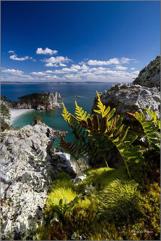 L'ile Vierge...joyau de la Presqu'ile de Crozon ! | Flickr - Photo Sharing!