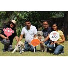 http://home4pet.com/Pet-Services/Pet-Cafe/pet-cafe-discount-voucher