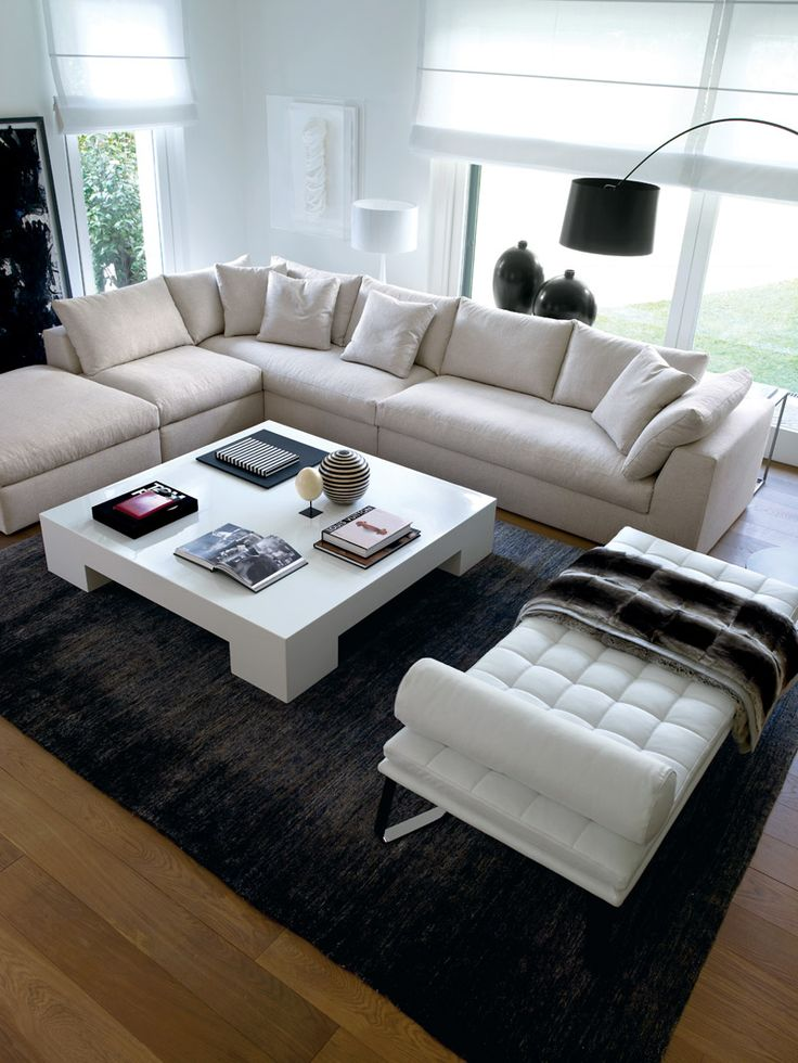 Contemporary living room made fab with a plush brown rug and throw.
