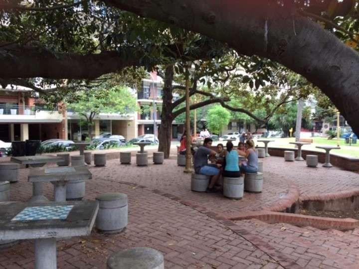 GPS Barrancas de Belgrano: un libro abierto entre los árboles