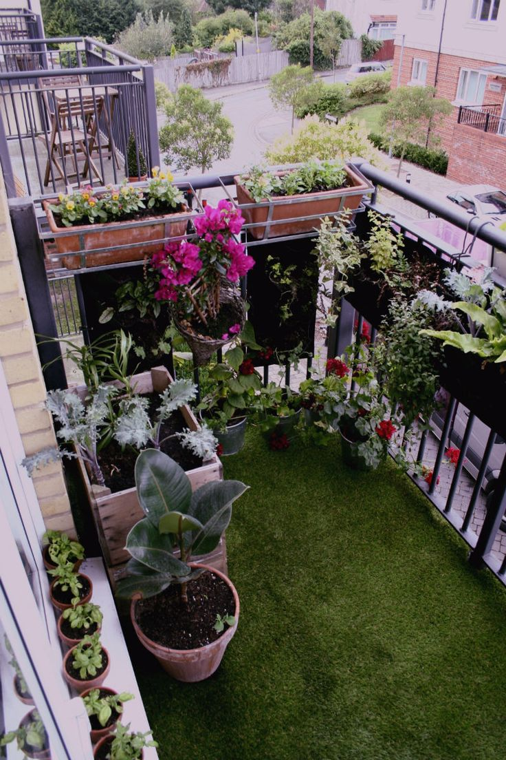 Balcony garden..love the grass!!