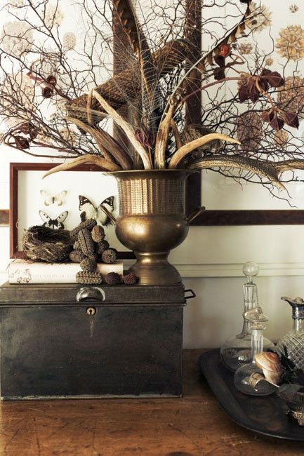 156 Best Branches Ideas Images On Pinterest Home Ideas