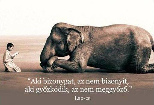 Lao-ce idézete a bizonygatásról és győzködésről. A kép forrása: Csikung útja # Facebook