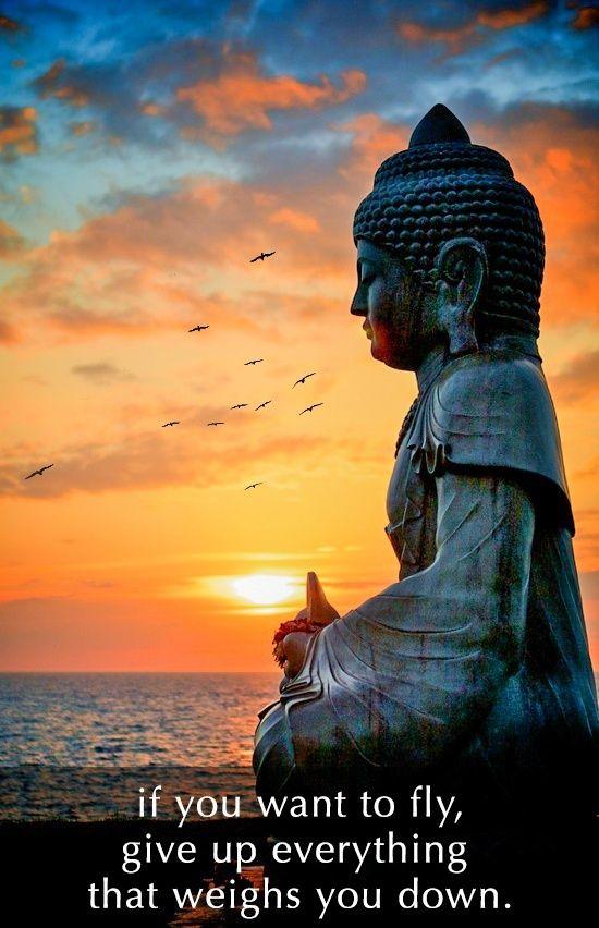 buddha More More
