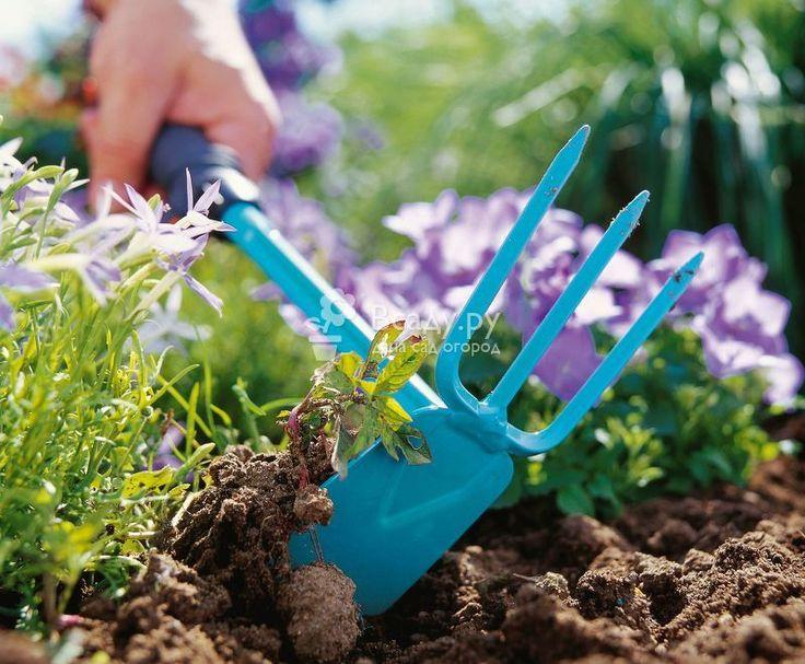 Экологически чистые методы борьбы с сорняками на участке