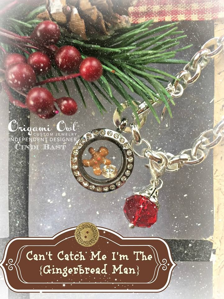 Silver Dangle Bracelet $18, Mini Silver Locket $24, 2 Charms $10, Crystal Dangle $6. Number of compliments you will receive...Priceless! | Origami Owl Ideas | …