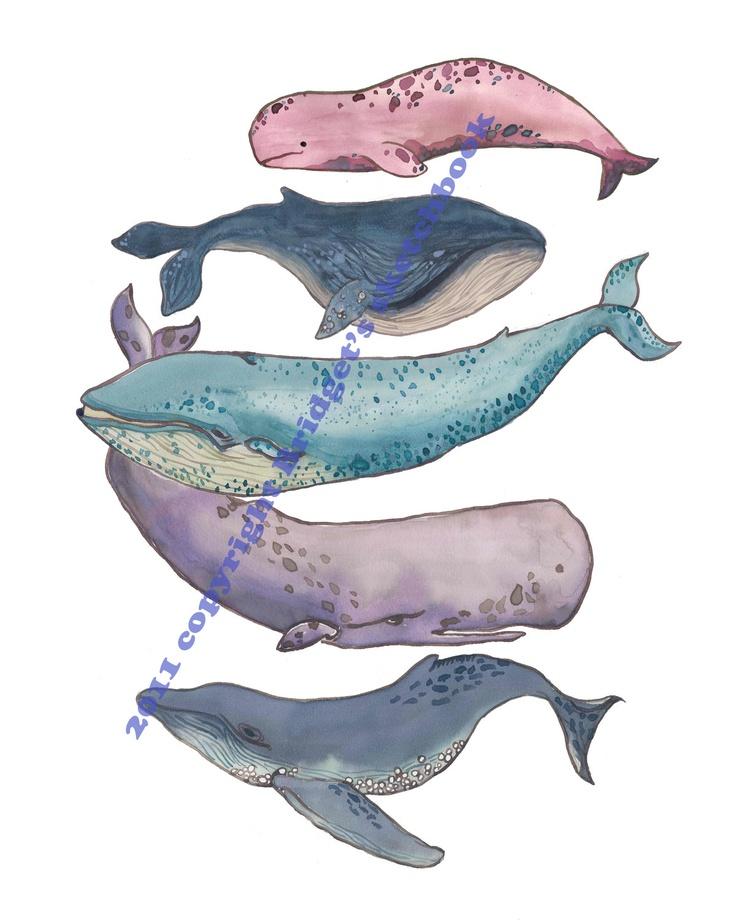 "Whale Poster PRINT 11x14"", nursery art print, blue, purple, pink, navy, animals"
