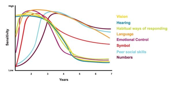 Graph developed by the Council for Early Child Development  (re: Nash, 1997; Early Years Study, 1999, Shonkoff, 2000)