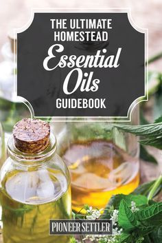 Essential Oils Guide | How To Use Essential For Young Living,  Congestion, For Weight Loss, Fertility and For Anxiety by Pioneer Settler http://pioneersettler.com/essential-oils-guide-for-homesteading/