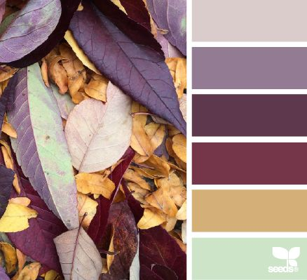 Fallen Hues - http://design-seeds.com/index.php/home/entry/fallen-hues14