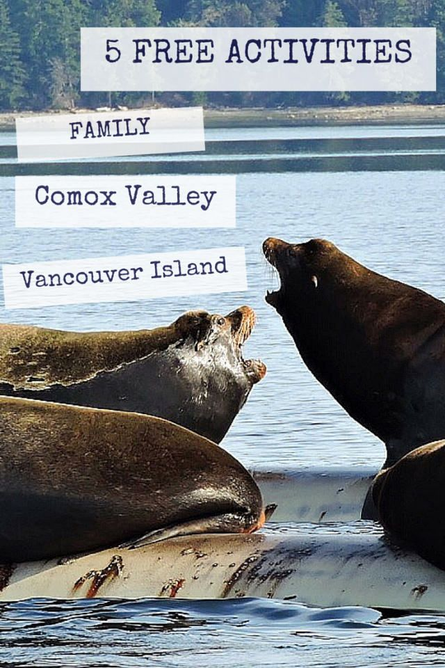 Fanny Bay, BC, Vancouver Island. Canada.  5 FREE activities in the Comox Valley! #explorebc