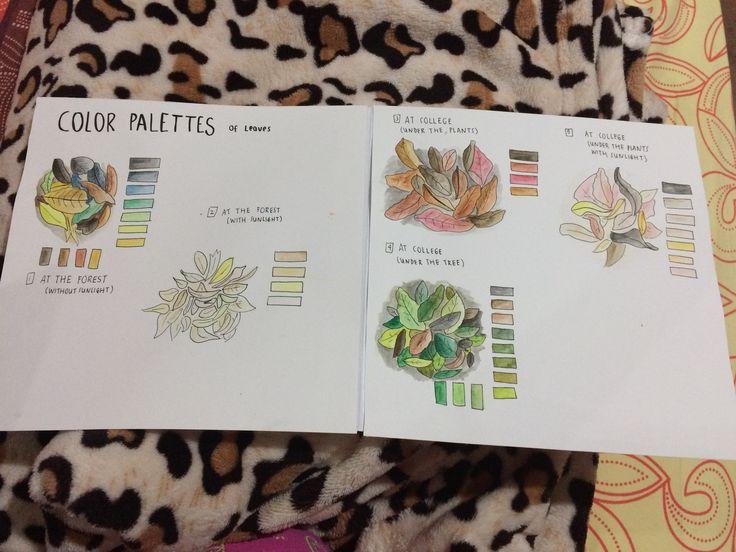 Color Palettes - XYZ 360' Project