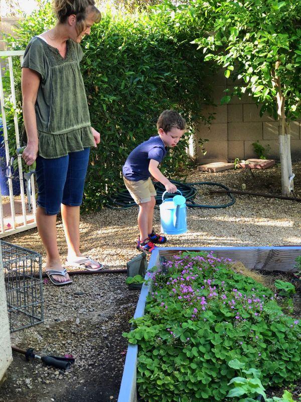 fcb599219a746b36e9e3d062e794340e - Vegetable Gardening In The Desert Southwest