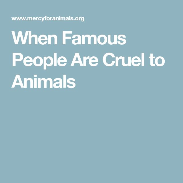 When Famous People Are Cruel to Animals
