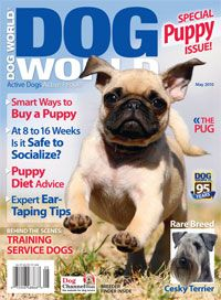 Dog World Magazine is written with the serious dog enthusiast in mind. Each issue contains articles that entertain and educate the readers about health care, training, nutrition, appearance, grooming, breeding, shows, legislation and breed traits. http://www.tripleclicks.com/14818999/detail.php?item=5589