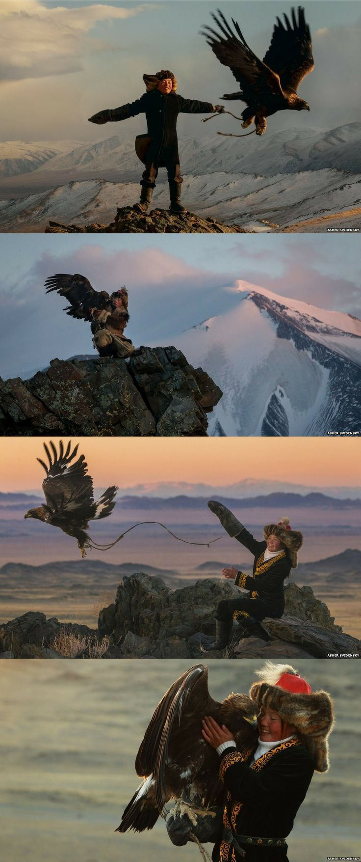 The Kazakhs of the Altai mountain range in western Mongolia are the only people that hunt with golden eagles, and today there are around 400 practising falconers. Ashol-Pan, the daughter of a particularly celebrated hunter, may well be the country's only apprentice huntress. http://www.bbc.com/news/magazine-26969150