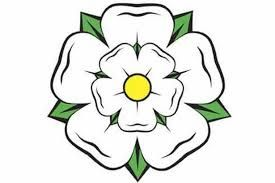 Image result for yorkshire rose