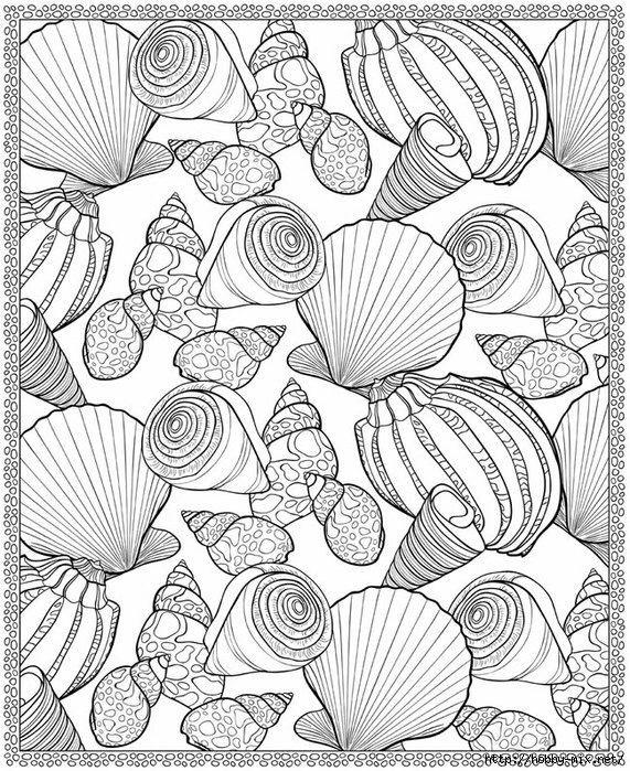 Kids Seashell Coloring Page Print This