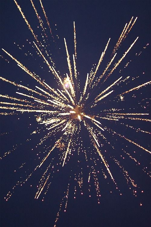 17 best ideas about fireworks on pinterest pics of fireworks