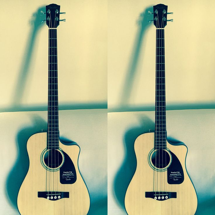 Acoustic bass by Fender