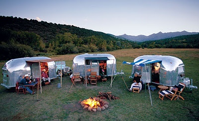 A litter of Airstreams