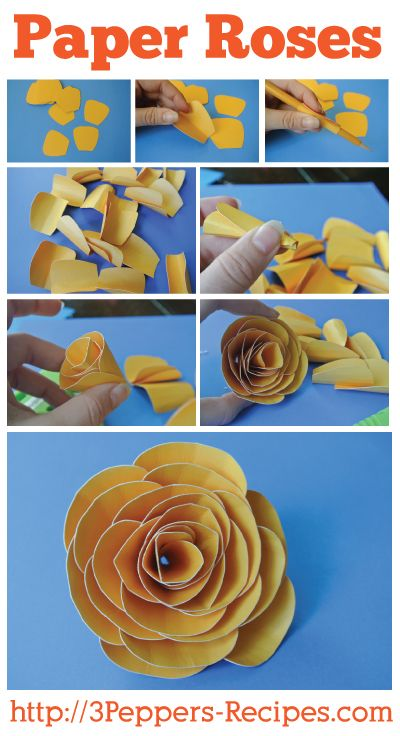 Paper Roses Tutorial & Cutter file form 3Peppers-Recipes.com