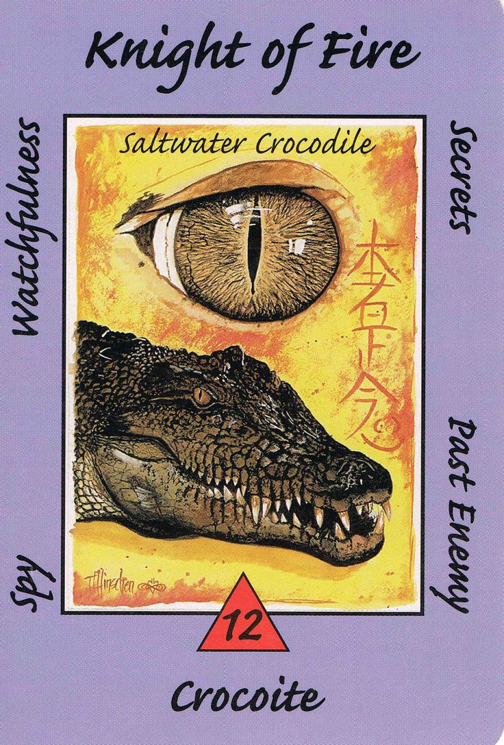 Kaos Magian Kids Crocodile White Daftar Harga Terkini Terlengkap Cole 2 Baju Pria Men Polo Shirt Relax Fit Katun Sapphire Xl Knight Fire Australian Animal Tarot Deck There Is A Spy