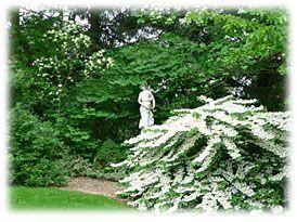 Le Jardin Des Songes In 2020 Woodland Plants Savannah Gardens
