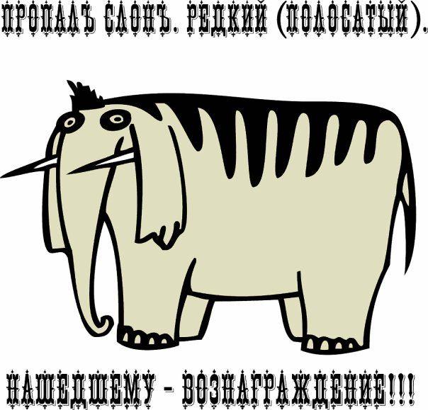 ним слон полосатый редкий картинки удобная