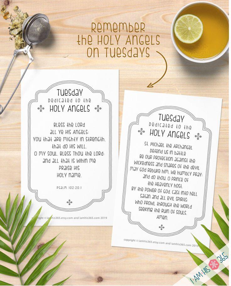 Daily Catholic Devotions Set of 14 Catholic Prayer