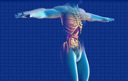 Morbo di Crohn: sintomi, diagnosi, alimentazione e cura - Il morbo di Crohn è una malattia che causa sintomi anche gravi, per cui una veloce diagnosi è necessaria. Qual è la cura adatta? L'alimentazione è importante?