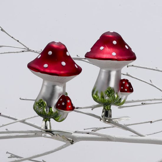 Mushrooms are considered to be a good luck symbol. Associated with nature and the beauty of the forest, finding a mushroom is considered to be very lucky and to mean good fortune is at hand. Mushroom ornaments are displayed on Christmas trees in Germany in honor of the people's reverence for nature and in hope of good luck in the New Year.