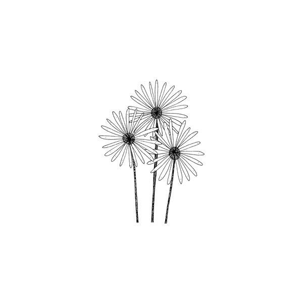 Blade Rubber Stamps Penny Black Penny Black - Flower stamps sun days (16 CAD) ❤ liked on Polyvore featuring fillers, flowers, doodles, backgrounds, drawings, text, effects, embellishments, details and quotes