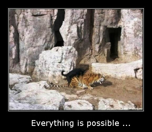 Everything is possible)))))