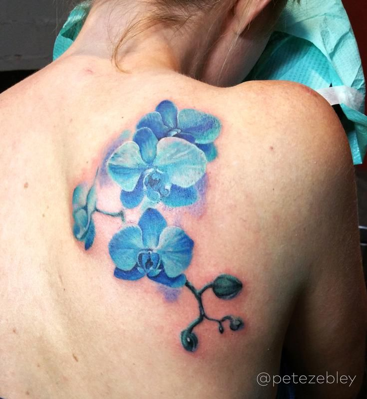 11.3.2015_Amy Koeller_Orchid Tattoo by Pete Zebley_Altview_WM.jpg (735×800)