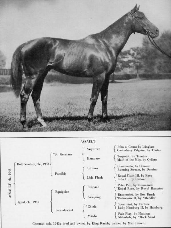 Triple Crown Winners In Conformation Critiques Forum Triple Crown Winners Horses Triple Crown