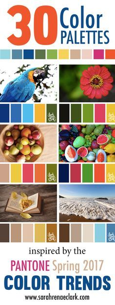 30 Color Palettes Inspired by the Pantone Spring 2017 Color Trends | See all 30 color schemes for inspiration at http://sarahrenaeclark.com