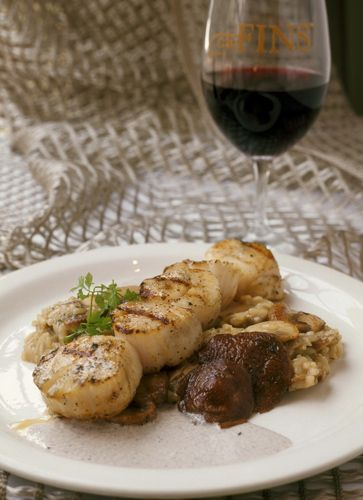 Mushroom Risotto with Grilled Sea Scallops and Mushroom Butter Sauce | Mushroom Info