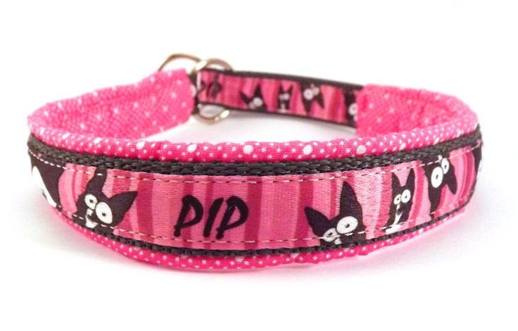 Safety collar with  specific Border. #colorfundogs #border