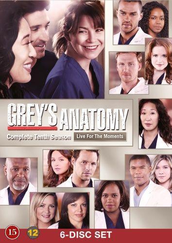 Greys Hvide Verden - Sæson 10 (6 disc) (DVD)
