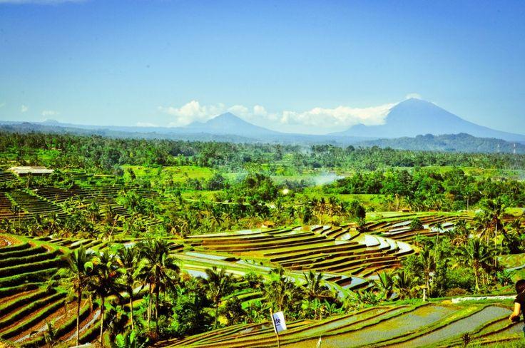 週末弾丸旅行でも満喫できるバリ島のおすすめ観光スポット厳選7選