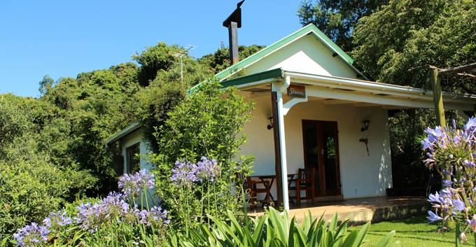 Lemonwood Cottages has over 200 species of bird. Would you 'like' to see a Knysna Loerie, Cape Parrot, Narina Trogon and Martial Eagle? www.midlandmeander.co.za