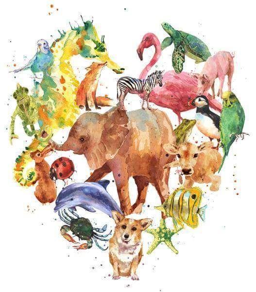 Ação Pelos Direitos dos Animais: Não. Os veganos não estão acabando com a biodivers...